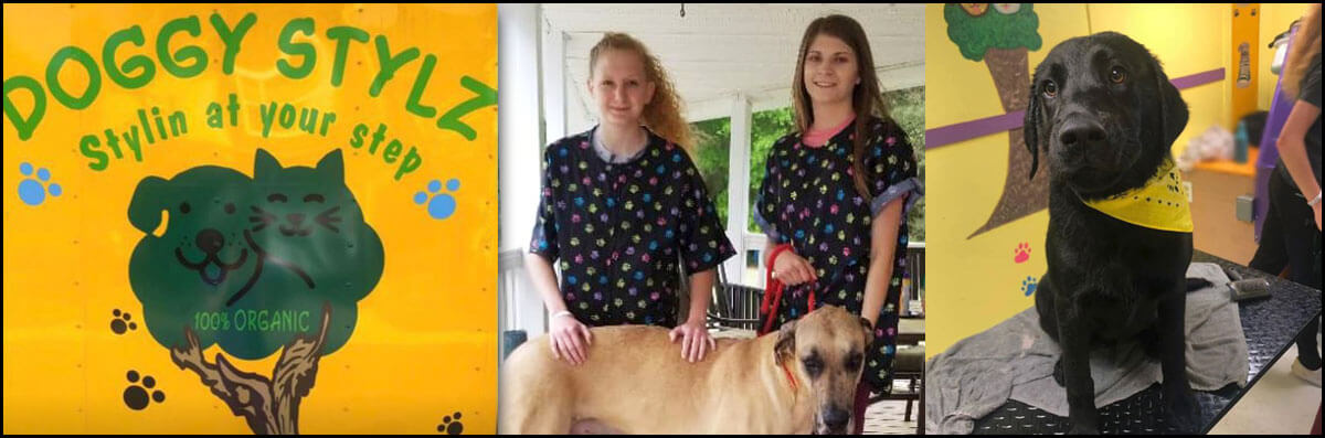 Doggy Stylz Mobile Pet Spa is a Mobile Dog Groomer and Mobile Pet Groomer in Columbia, SC